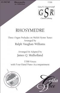 Rhosymedre   41-96740